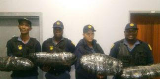 Two nabbed with dagga worth R50 000, Keimoes. Photo: SAPS