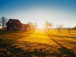 Farm attack, five attackers overpower couple, Tuinplaas
