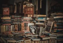 Best Fiction Books Ever About South Africa