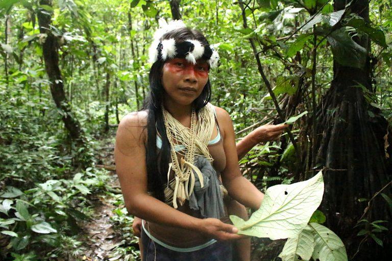 Nemonte muestra el pañal de la selva, una hoja tersa y absorbente con la que envuelven a los bebés por las noches. Foto: Daniela Aguilar.