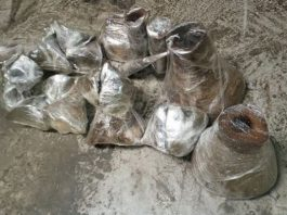 22 Rhino horns: Dealer nabbed at OR Tambo International Airport. Photo: SAPS