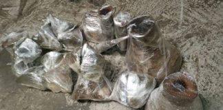 22 Rhino horns: Dealer nabbed at OR Tambo International Airport. Photo: SAPS