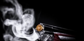Can Legal Gun Ownership Resolve SA's Increasing Crime Rate?