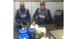 Theft of diesel from fire department trucks, man arrested, Humansdorp. Photo: SAPS
