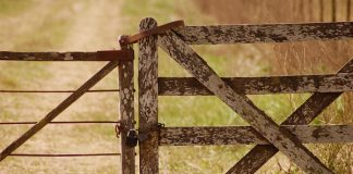 Farm attack, elderly woman overpowered, assaulted, Onderstepoort