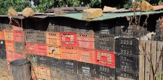 More than a thousand milk crates stolen to build house, Vryheid. Photo: SAPS