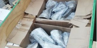 Hawks deal major blow to drug dealers and rhino horn smugglers, JHB. Photo: SAPS