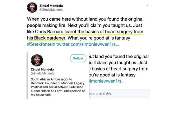 Racist twitter messages: AfriForum calls for dismissal of Zindzi Mandela, Denmark. Photo: FNSA