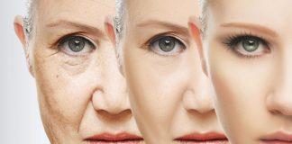 Researchers making huge strides in anti-aging studies