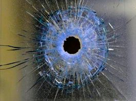 Despatch business robbery, shop owner shot and wounded