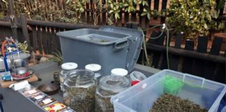 Drug lab: R200k worth of drugs uncovered, Tzaneen. Photo: SAPS