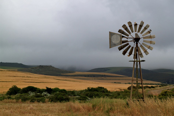 50 Farm attacks and 4 farm murders in South Africa during May 2019