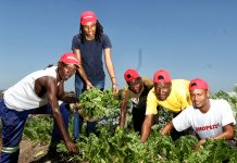 Unemployed KwaMashu matriculants' garden project bears much fruit