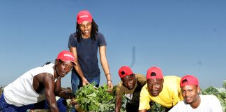 Unemployed KwaMashu matriculants' garden project bears much fruit