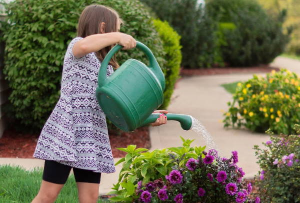 Tips for Creating a Kid-friendly Backyard