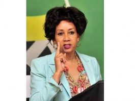 Sisulu to ask Cabinet to declare dams as National Key Points