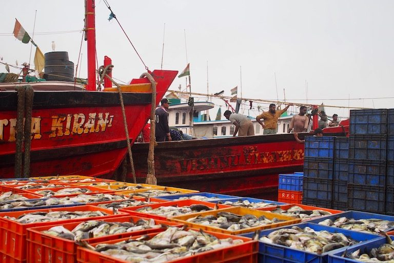Fishing supports as many as four million people, according to government estimates, including one million active fishers. Image by Vaishnavi Chandrashekhar.