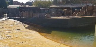 Deterioration of Gauteng zoos: FF Plus to take action. Photo: FF Plus