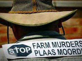 Double farm murder, elderly couple brutally murdered, vehicle lookout, Boshof