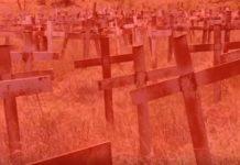 Gruesome Boshof farm murder: 5 arrested, couple were tied up, brutally beaten, shot