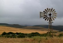 ANC uses army to act against gangs, but silent on the slaughter of farmers