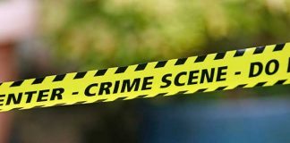 East rand robbery gang involved with murder of Veterinarian still active