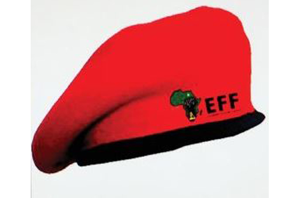 CR17 election payments, two EFF MP's resign