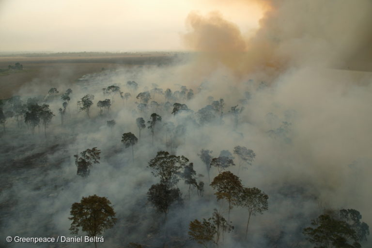 U.S.-based Cargill corporation burns large areas of Amazon rainforest in norther Pará state to prepare for soya plantations in 2003. Image by Daniel Beltrá/Greenpeace