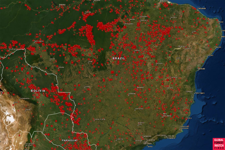 Global Forest Watch (GFW) - Fires map showing active fires for the week starting August 13, 2019 in the Brazilian Amazon using VIIRS and MODIS satellite data. Courtesy of GFW.