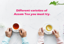 Different varieties of Assam Tea you must try