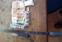 Drugs and burglaries: Elliot K9 unit members carry out operation. Photo: SAPS