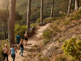 A Beginner's Guide to Getting you Trail-Run Ready