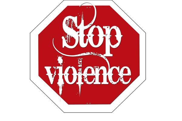 Parliament debates violence, but sets a poor example itself