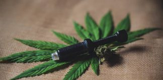 The Legalization of CBD in South Africa