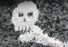 Cocaine dealer arrested, Chatsworth