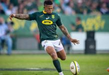 Partnering with a Springbok to take on new fields of opportunity