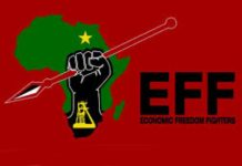 Colonial symbols: EFF's senseless motion promotes racial polarisation