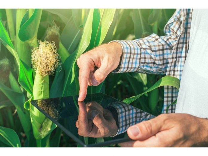 Technology can enhance food security in Africa