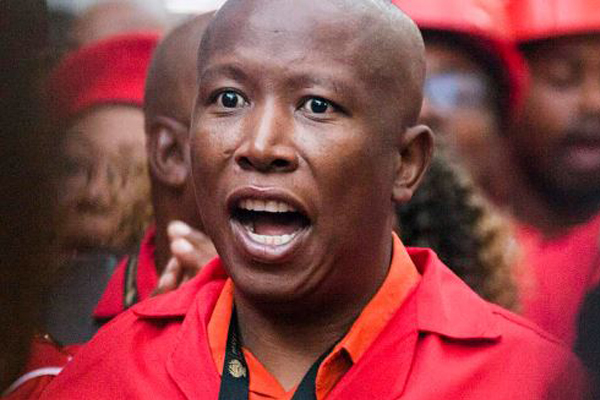 Malema to allegedly appear in court soon regarding shooting incident. Photo: AfriForum