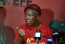 Julius 'Cut the throat of whiteness' Malema's above the law status cut by Afriforum