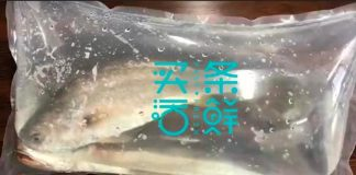 China's Fresh Aquatic Food Supply Chain Company Maitiao Huoxian Raised Millions of Yuan in an Angel Round Funding Led by Buhuo VC