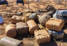 Massive dagga haul recovered during roadblock, Willowmore. Photo: SAPS