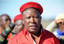 NPA refuses to prosecute: Is Malema above the law? Photo: AfriForum