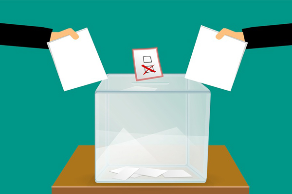 IEC systems failing to eliminate illegal voters and candidates. Photo: Pixabay