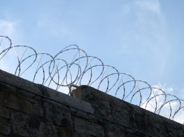 FF Plus supports notion that certain categories of prisoners should do hard labour. Photo: Pixabay