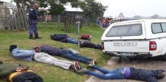 8 CIT robbers arrested enroute to commit armed robbery, George. Photo: SAPS