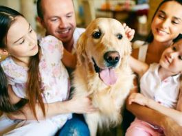 6 Reasons Owning A Pet Is Good For Your Health