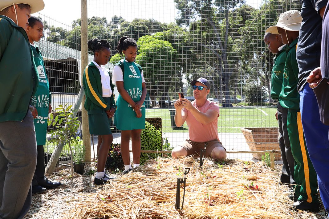 Learners get fresh veg and skills from school garden