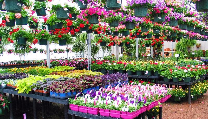Spring Gardening.jpg