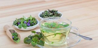 Herbal Treatment For Anxiety: 3 Benefits For Mentality